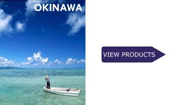 Okinawa Modern Roots